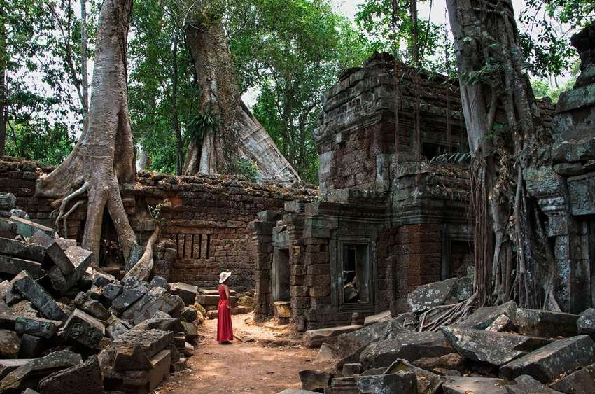 De jungle tempel Ta Prohm<br>